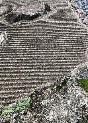 גן יפני 2018.jpg