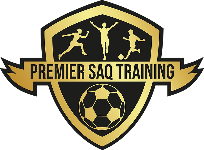 MASTER png file logo for Premier SAQ Training 4th July 2019 on its own 2_edited.png