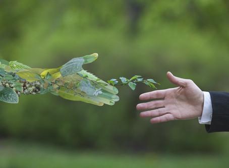 Una ripresa trasformativa, una sfida concreta per la sostenibilità