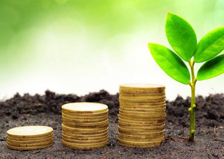 Green bond e cultura della finanza sostenibile