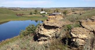 Bedrocks in The Sandstone Project