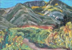 Road to Arroyo Seco II