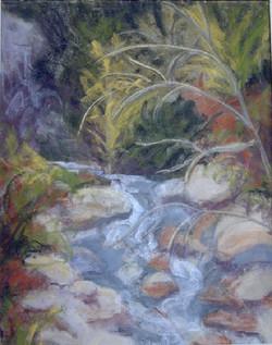 Taos Mountain Stream