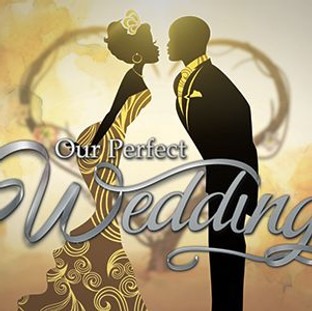 Our Perfect Wedding