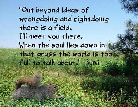Rumi%20and%20Mr_edited.jpg