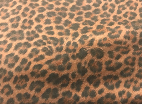 Leap into Leopard this year