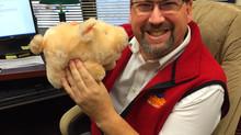 Will Mr. Kingsland Kiss a Pig?