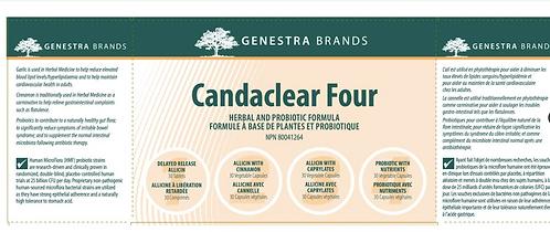 Candida & Parasite Kit Cleanse Bundle
