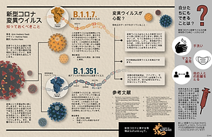 Japanese_CovidVariants_Infographic.png