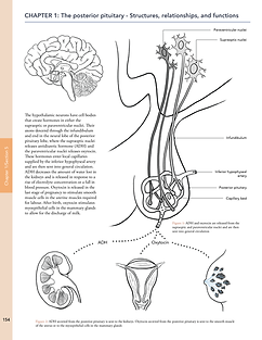 colleen paris BMC pituitary gland