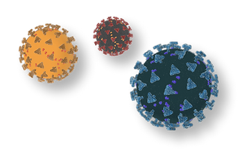 covid-19 corona virus icons