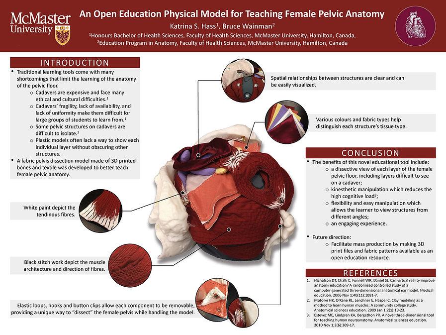 fabric dissection pelvis model katrina hass medical art physical anatomy bruce wainman education tool poster presentation mcmaster university health science