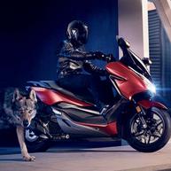 Honda Forza 125.png