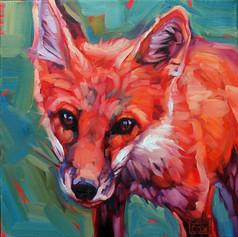 Little Fox #1