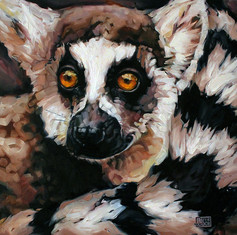 Ghost of Madagascar