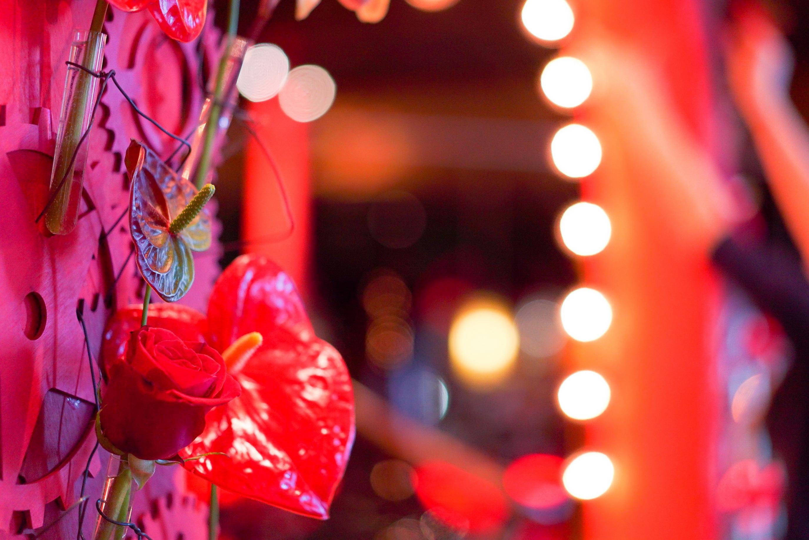 Флористика на Валентинов день