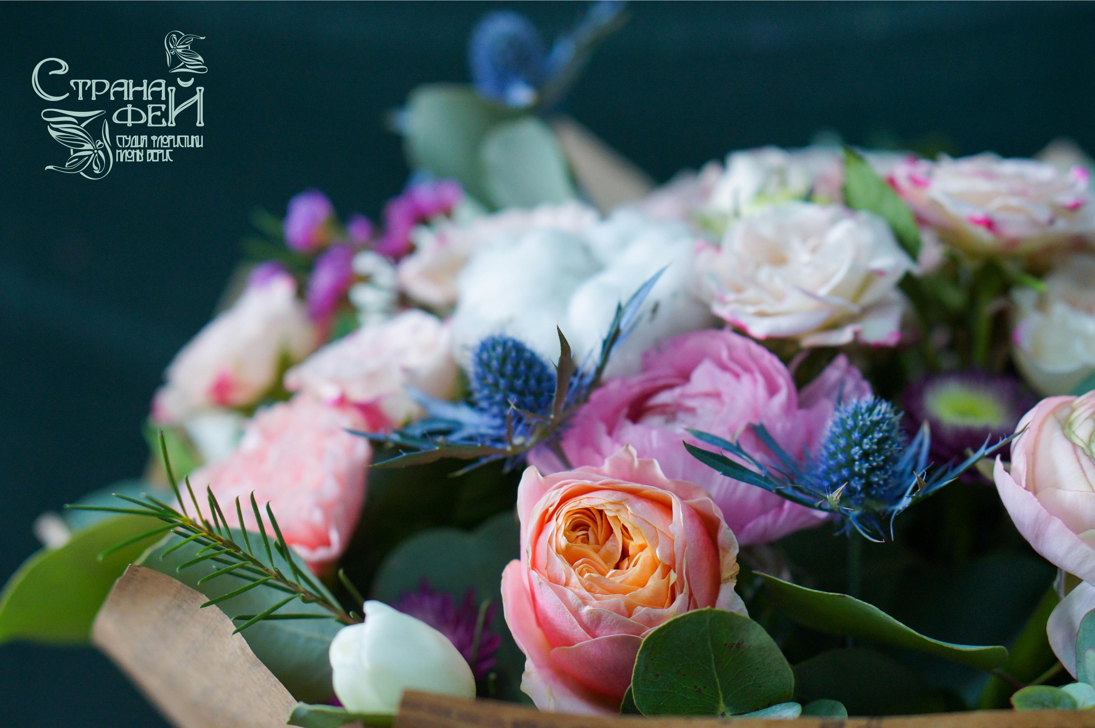 Роза вувузэлла и ирингиум