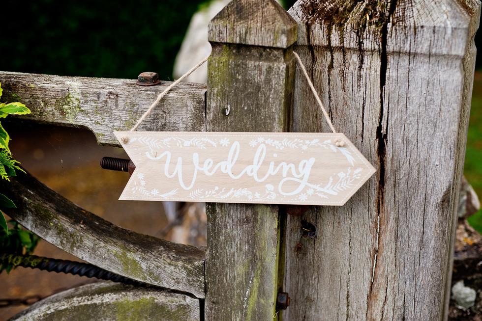 049 To the wedding.jpg