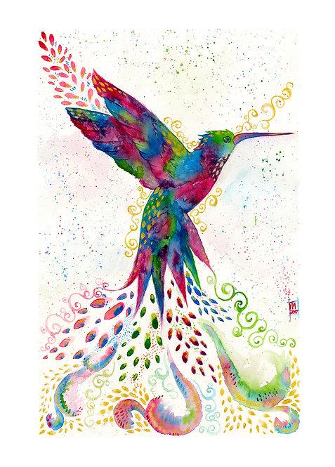 Rainbow Humming Bird Art Print