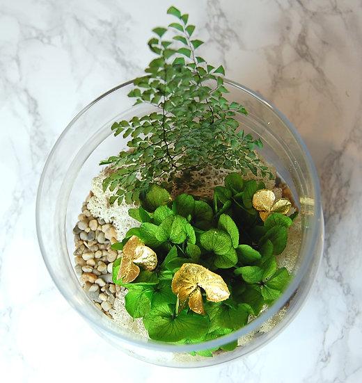 Terrarium XL hortensia vert