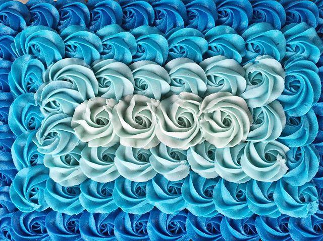 Ombré rose swirl for dayyys💙 #bakedbyjordan #cake #cupcakes #ombre #roseswirl #vanilla #chocolate #