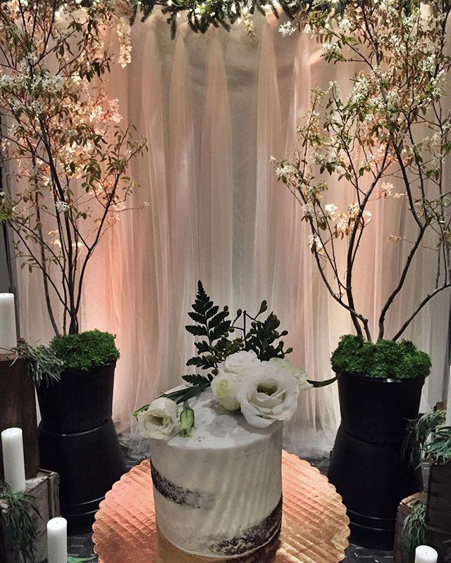 5_ Semi Naked Cake🎂_ktweddings you killed this set up!!! So so pretty!! #bakedbyjordan #cake #cupca
