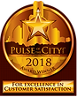 Pulse_of_the_City_2018.png