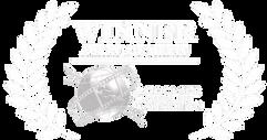 Accolade-Merit-logo-WHITE2-png-768x407.p