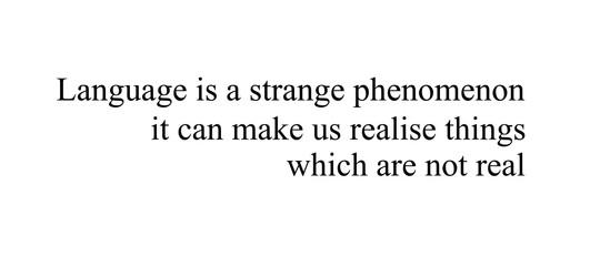 Language Phenomenon