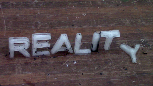 Reality project