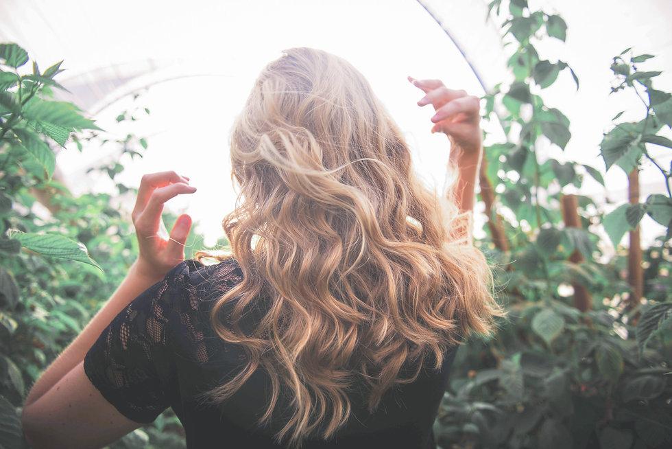 Professional Hair Salon highlights