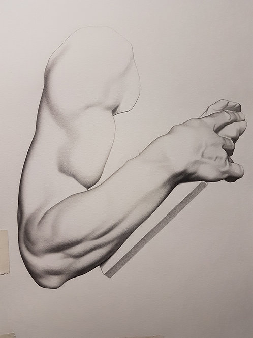 Realistic Drawing Course - Bargue methods