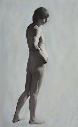 Desenho a partir do modelo (Ian) Carvao