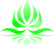 Jane Goodman's Holistic Therapies | Anmo Fu Abdominal Massage Therapy | 07908 010 005