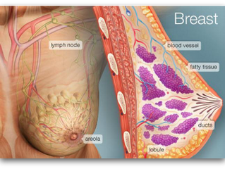 Bowen Breast Procedure