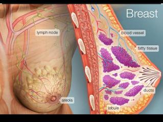 Bowen Breast Procedure