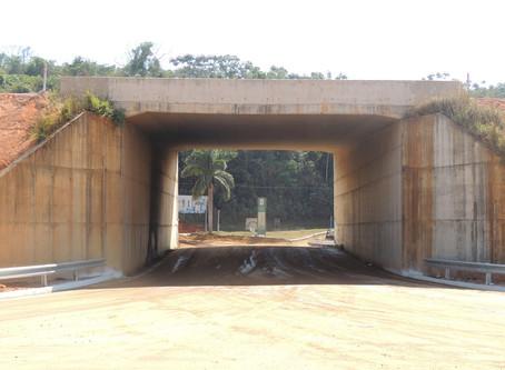 Transportadores de carga devem atentar para altura máxima em OAEs