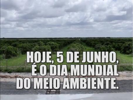 05/06 - DIA MUNDIAL DO MEIO AMBIENTE