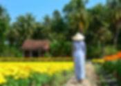A woman walking on flower plantation in
