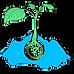 money seed marketing logo