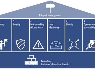 Governance Challenges in Smaller Charities