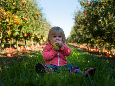 Mindful Eating Exercise to Do with Your Kids