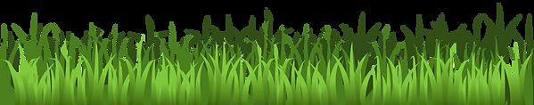 wellington pro lawn landscape landscaping irrigation lawn