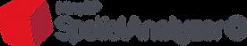 SpatialAnalyzer-logo.png