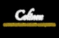 Colinex_logo_2019.png