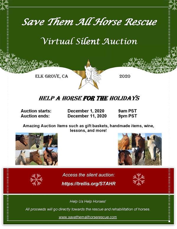 Silent auction flyer - 2020.jpg