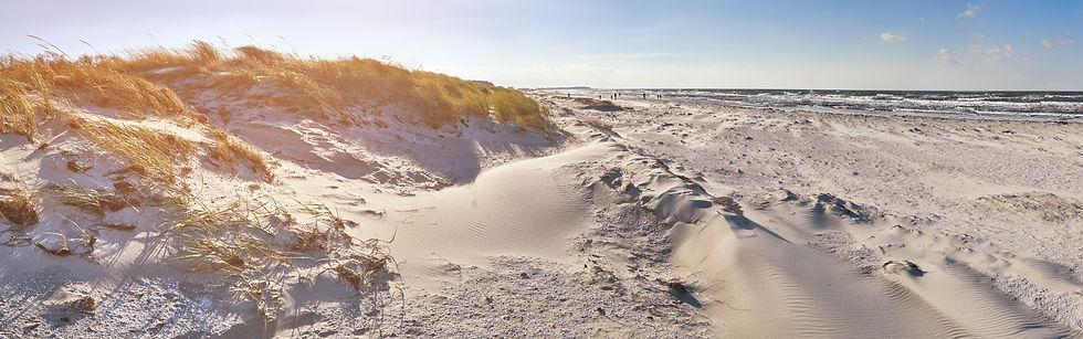 sand-dunes-and-sandy-beach-in-hiddensee-