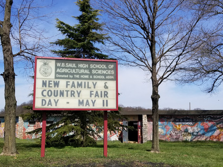 Country Fair Day at Saul May 11, 2019