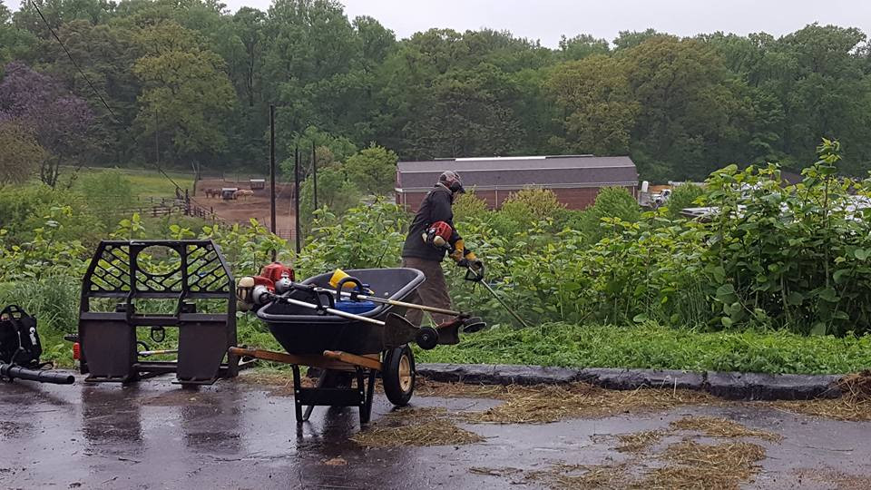 Brave volunteers weathered the rainy day  and did some landscaping