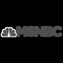 GRAY_msnbc-logo copy.png
